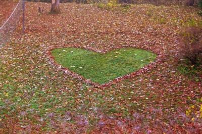 Herz im Herbstlaub